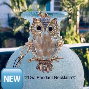 Owl Pendant Sweater Necklace (New!)